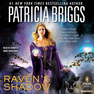 raven's shadow, The Raven Duology Book 1 review