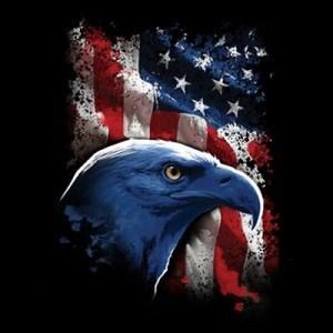 patriotic shirts, bald eagle shirt, american flag shirt